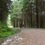Walks in Glen Nevis Two Drifters Meander through the forest, Scotland