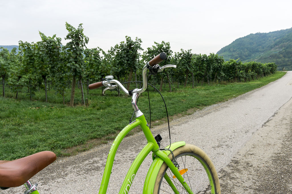 Bike and Wine Tour Wachau Valley, The Two Drifters, www.thetwodrifters.net